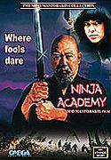 Ninja Academy  online